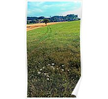 Fields, flowers and a hiking trail | landscape photography Poster