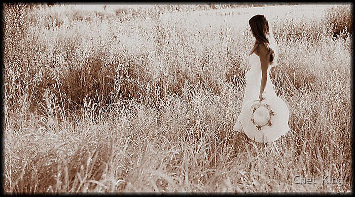 Field Of Dreams by Chet  King