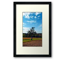 Tree in summer time with clouds | landscape photography Framed Print
