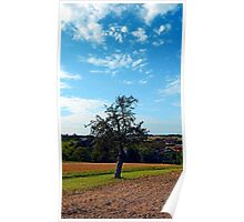 Tree in summer time with clouds | landscape photography Poster