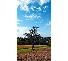 Tree in summer time with clouds | landscape photography Photographic Print