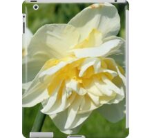 Double Narcissi iPad Case/Skin