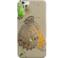 Meadow Brown Butterfly Feeding On Aphids iPhone Case/Skin