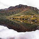 Lake Reflections by Stephen  Nicholson