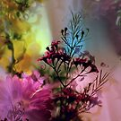 Spring Fling II by Kathy Nairn
