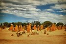 The Pinnacles, Cervantes, Western Australia #7 by Elaine Teague