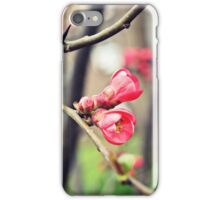 Springtime blossoms iPhone Case/Skin
