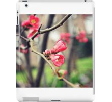Springtime blossoms iPad Case/Skin