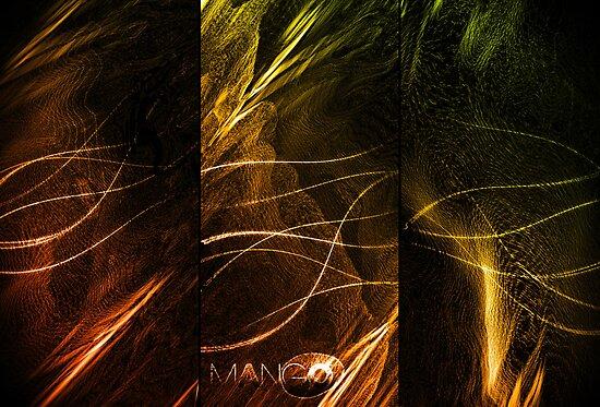 Mango by Patrick Yan