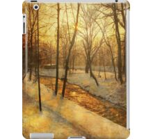 Winter on the Olza River iPad Case/Skin