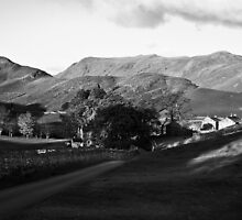 Martindale by Paul Davey
