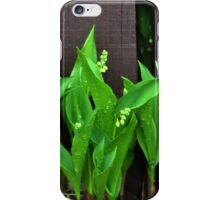 Lily of the Valley......... iPhone Case/Skin
