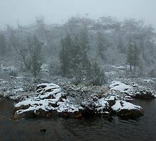 Autumn Snows by Travis Easton