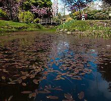 Japanese Gardens, Mayne Island, BC by toby snelgrove  IPA