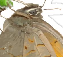 Meadow Brown Butterfly Feeding On Aphids Sticker