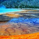Artist&#x27;s palette.... Hot spring in Yellowstone Nationa Park, USA by Tamara Travers