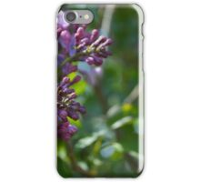 Lilac Blossom 2 iPhone Case/Skin