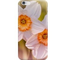 Narcissus iPhone Case/Skin