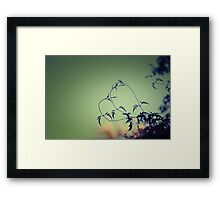 Even nature's saying it loves you. Framed Print