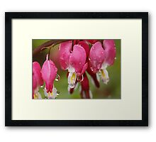 My Heart Cries Framed Print