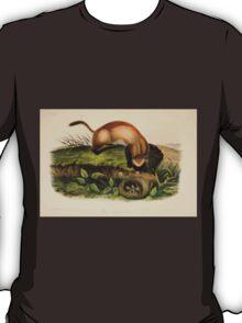 James Audubon - Quadrupeds of North America V2 1851-1854  Black Footed Ferret T-Shirt