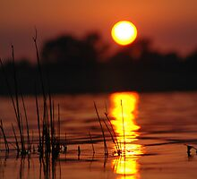 Lake Albert Sunrise by Moorey