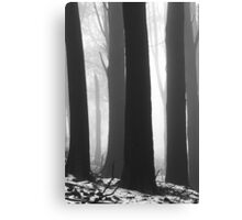 BLACK and WHITE. Canvas Print