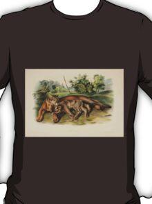 James Audubon - Quadrupeds of North America V2 1851-1854  Cougar Female Young T-Shirt