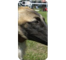 Furry Whippet