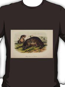 James Audubon - Quadrupeds of North America V3 1851-1854  Hoary Marmot Whistler T-Shirt