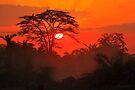 African Sunrise, Amboseli National Park, Kenya, Africa. by PhotosEcosse