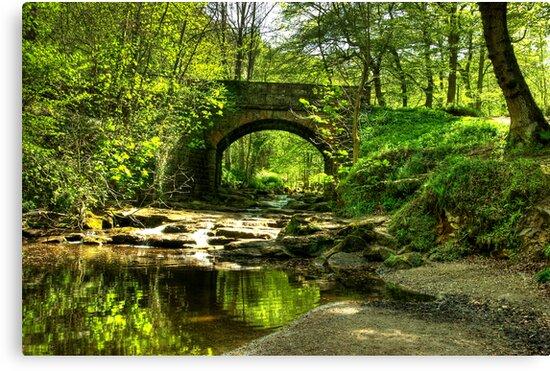 The Bridge at May Beck by Trevor Kersley