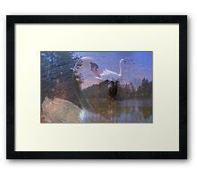 Visions of Summer  Framed Print