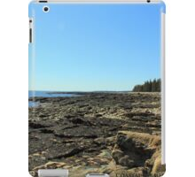 Southwest Harbor iPad Case/Skin