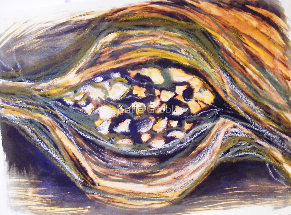 Seedpod III by Katie Grubb