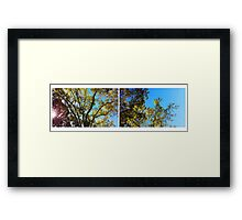 upward Framed Print