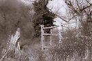 Broken fences by CJTill