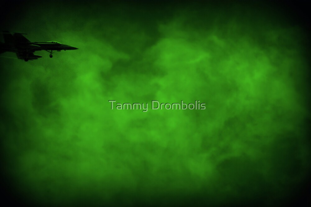 Flying the Emerals Skies by TingyWende