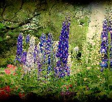 Southern Garden by Jonicool