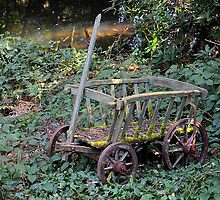 Little Cart by relayer51