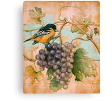 Orioles wine Canvas Print