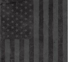 US Flag - Grey by ZedEx