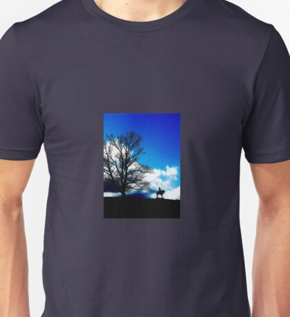 A Song of Blue and Gray T-Shirt