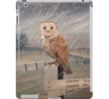 Waiting for the storm to pass.... iPad Case/Skin