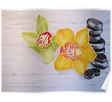 Orchids and stones  Poster