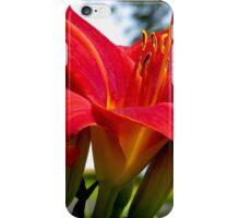 Red Magic Daylilies iPhone Case/Skin