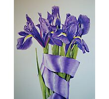 Your favourite flower Photographic Print