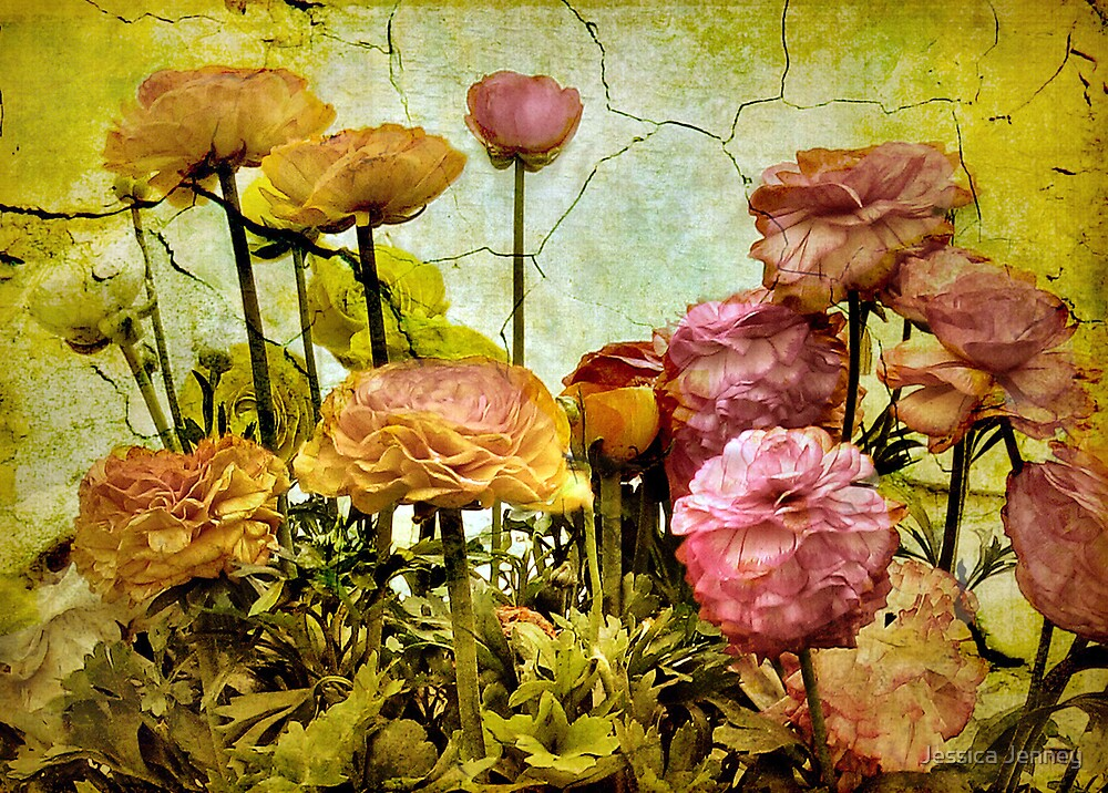 Floral Fresco by Jessica Jenney