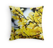Lovely day in May Throw Pillow