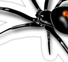 Redback Spider Black Widow Sticker